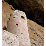 Mesa Verde's Spruce Tree tower
