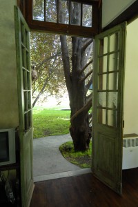 The back doors of our casita -- the one the dogs know how to open -- leads to the garden.