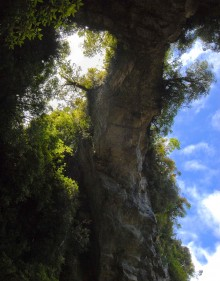 We had to crane our necks all the way back and look straight up to get this view of a natural bridge over the trail. The limestone arch sprouts symetrical sideways trees.