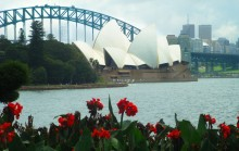 The Harbour Bridge and Opera House as seen from the Royal Botanic Gardens.