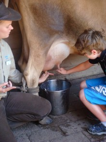 Kyle (seen here with a ranger) got to milk a cow and learned about 19th-century farm life at Churchill Island.