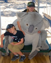 After wandering through the Koala Conservation Centre, the kids were ready to take a nap.